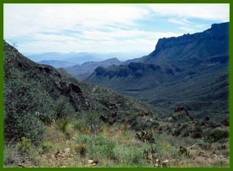 Najveće pustinje na svetu  Chihuahuan-pustinja